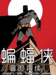 蝙蝠俠-冒險再續