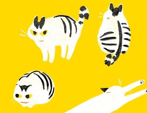 和貓在一起生活的日記